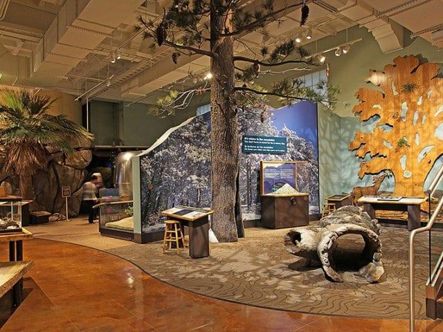 Museu de História Natural de San Diego na Califórnia